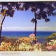 フィリピンからの便り⑦「夏の思い出-ボホール島」-No.000(モチーフ画像)