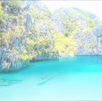 フィリピンからの便り⑥「パラワン島の舟旅」-No.000(素材)